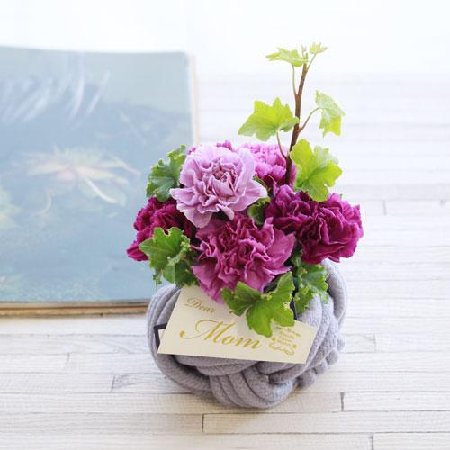 青山フラワーショップの母の日ギフト用アレジメント